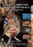 Great British Marine Animals