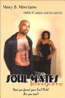 SoulMates Dissipate: A Novel