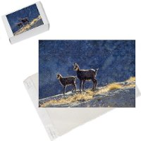 Photo Jigsaw Puzzle of CHAMOIS - two, backlit from Ardea Wildlife Pets