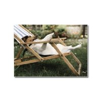 Clinton Cards - Postcard - Photo Dog In Deckchair