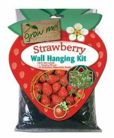 Chatsworth Grow Me - Strawberry Wall Hanging Kit - Strawberry Seeds & Planter